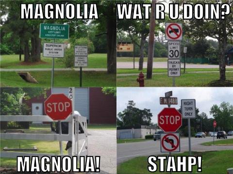 Magnolia STAHP